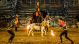 Apzara Merlin la légende du Roi Arthur spectacle équestre